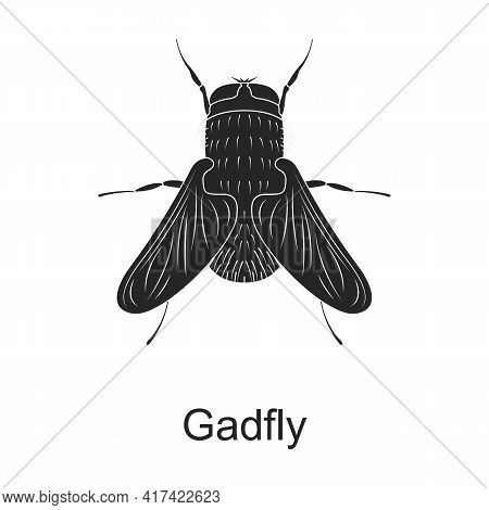 Gadfly Vector Black Icon. Vector Illustration Pest Insect Gadfly, On White Background. Isolated Blac