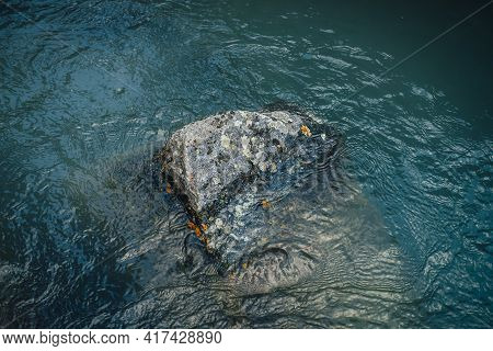 Nature Background Of Deep Green Lake With Stone. Texture Of Dark Blue Calm Water Of Lake. Meditative