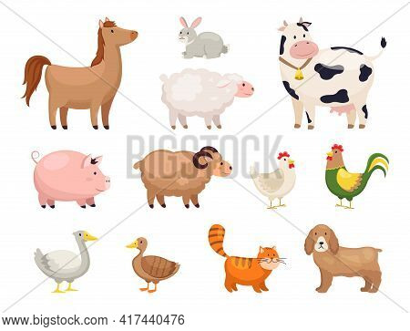 Farm Animals. Funny Cartoon Domestic Birds, Rural Life, Cute Comic Characters, Horse And Geese, Chic