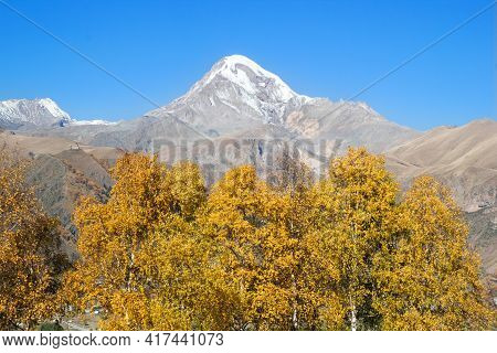 View Of Mount Kazbek In The Greater Caucasus Mountains Of Georgia With Yellow Autumn Trees Near To V