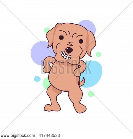 Cute Labrador Dog Expressing Anger, Excitement And Frown
