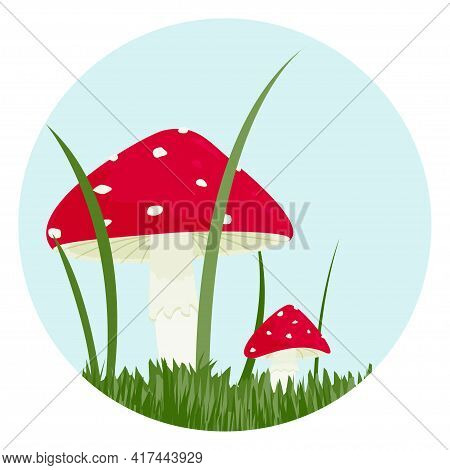Two Fly Agaric Plants In The Grass On A White Background