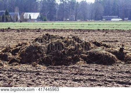 Pile Of Manure On Plowed Field In Village In Spring With Houses In The Background