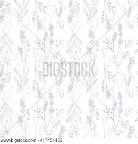 Lavender Purple Vector Seamless Pattern. Violet Lavender Hand Draw Background.
