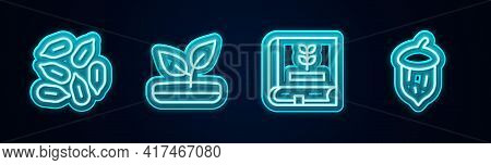 Set Line Seed, Sprout, Book About Seeds And Acorn, Oak Nut, . Glowing Neon Icon. Vector
