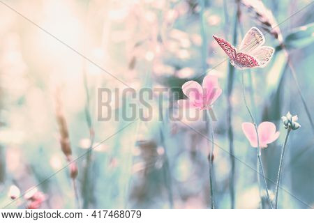 Shallow Depth Beautiful Wildflowers, Butterfly In The Dreamy Meadow. Delicate Retro Colors Pastel To