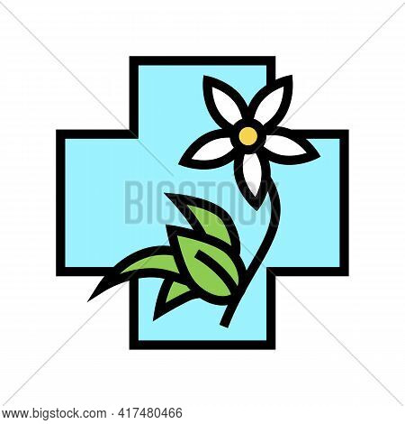 Flower Natural Homeopathy Medicine Color Icon Vector. Flower Natural Homeopathy Medicine Sign. Isola