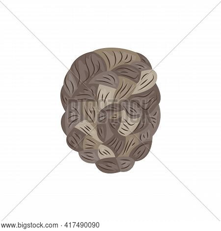 Whimsical Female Hairstyle Or Hairdo With Braids, Vector Illustration Isolated.