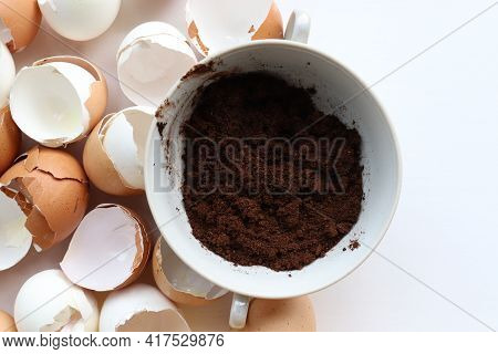 Used Coffee Grounds And Eggshells For Organic Compost For Plant. Top View.