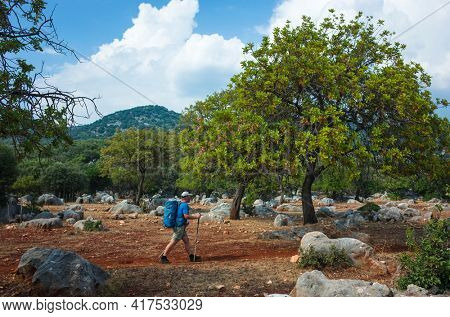 Hiking Lycian way. Man is walking on terracotta rocky land on stretch between Kas and Ucagiz of Lycian way trail, Trekking in Turkey, outdoor activity