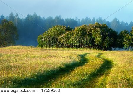 Spring Scenery. Misty Sunrise. Green Meadow Surrounded Woodland. Road On Meadow.