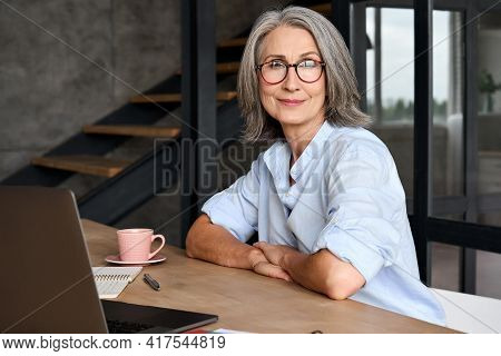 Portrait Of Smiling Middle Age 60s Aged Business Woman Working At Home Office With Laptop, Headshot