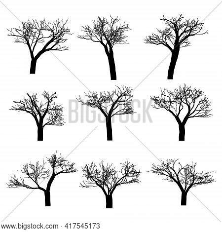 Set Of Vector Trees. Vector Tree Icon. Tree Logo. Vector Tree Design. Fruit Trees And Fruit Trees. W