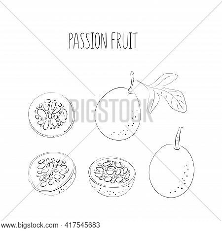 Vector Set Of Black Line Passion Fruit, Passionfruit, Maracuya Purple Colors. Whole And Cut Pieces O