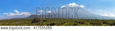 El Misti And Chachani Volcanoes And Cactus, Panoramic View, The Best Of Volcanoes Near Arequipa City