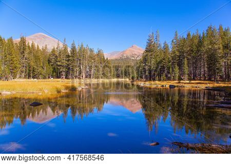 Sunrise. The Tioga Road and Pass in Yosemite Park. Forests and mountains are reflected in the smooth water of the lake. USA. North America