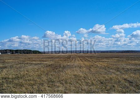 Spring country landscape with an image of the field