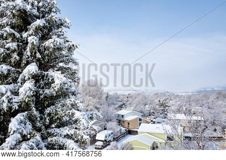 winter sunrise over a residential street in Fort Collins, northern Colorado, after springtime snowstorm -  aerial view