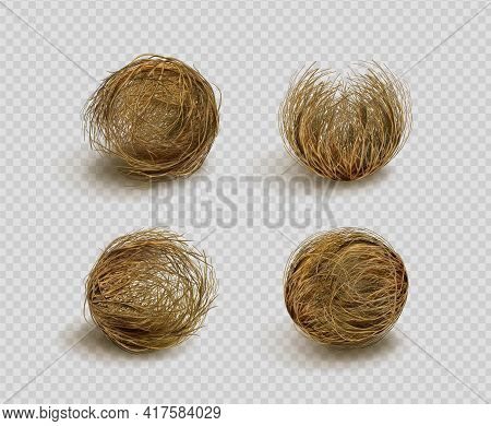 Tumbleweed, Dry Weed Ball Isolated On Transparent Background. Vector Realistic Set Of Western Desert