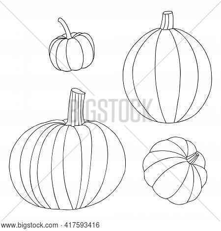 Vector Set Of Pumpkins Of Different Shapes And Sizes In The Style Of Doodle. Pumpkins Are Drawn With
