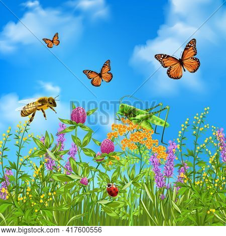 Insects In Summer Grass Field Realistic Colorful Composition With Butterflies Bumblebee Grasshopper