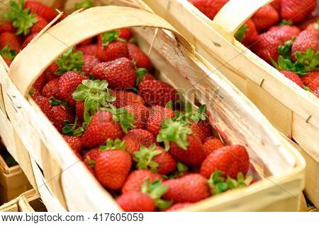 Fresh Strawberries From Organic Farm Arranged In Baskets Ready For Sale At Marketplace.
