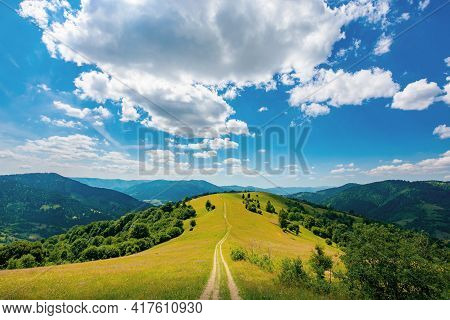 Road Through Meadow In Mountains. Beautiful Rural Landscape Of Carpathians On A Sunny Day. Wonderful