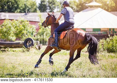Young Man Riding Horse On Cross-country Course