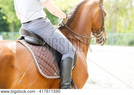 Young Girl Riding Horse On Equestrian Training