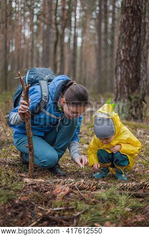 Mom And Child Walking In The Forest After The Rain In Raincoats Together, Looking At Mushrooms On A
