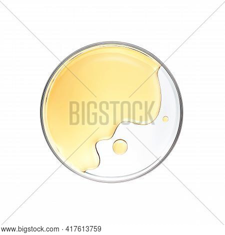 Honey In Petri Dish Over White Background - Flat Lay