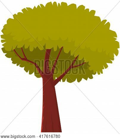 Tall Tree With Brown Thick Trunk And Leaves. Large Plant With Dense Round Crown Isolated On White