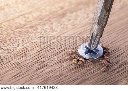 Screwdriver Screw In A Wood Oaks Plank. Self-tapping Screw For Pz3 Bit. Screws Macro Photo. Construc