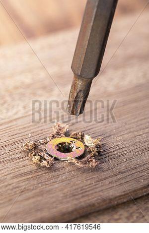 Screwdriver Screw In A Wood Oaks Plank. Self-tapping Screw For Torx 25 Bit. Screws Macro Photo. Cons