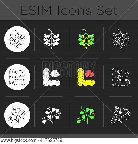 Seasonal Allergen Causes Dark Theme Icons Set. Poplar Tree Pollen. Blooming Sagebrush. Common Cause