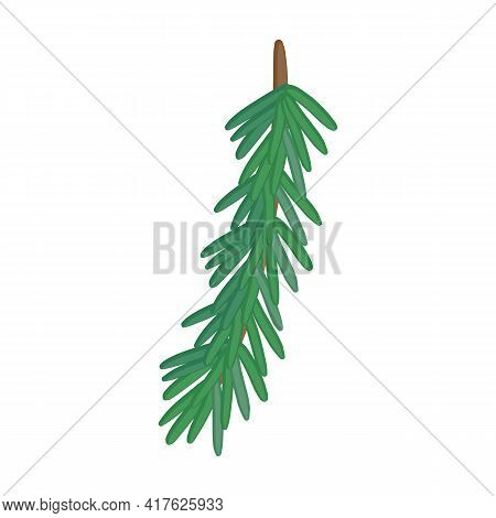 Twig Pine Isolated Cartoon Icon. Vector Illustration Spruce Twig Pine On White Background. Vector Ca