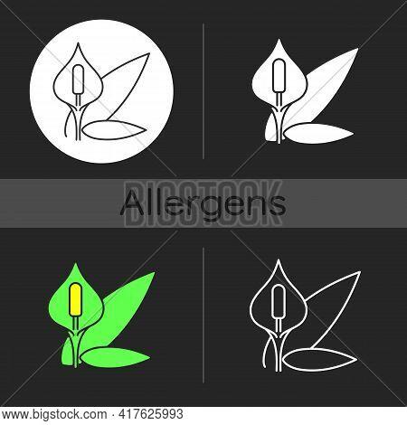 Spathiphyllum Dark Theme Icon. Seasonal Flower, Pollen Allergy. Houseplant Bloom. Common Allergen. F