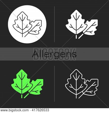 Lambs Quarters Dark Theme Icon. Cause Of Allergic Reaction. Lambsquarters, Goosefoot Leaves. Allergy