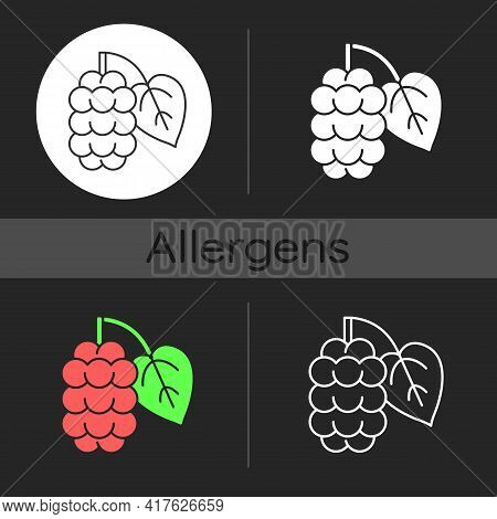 Mulberry Dark Theme Icon. Morus Fruit, Blackberry On Branch. Fresh Nutrient Food Ingredient. Allergy