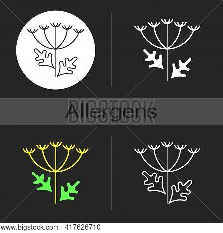 Queen Annes Lace Dark Theme Icon. Blooming Wildflower. Wild Carrot Flower. Pollen Allergen. Allergy