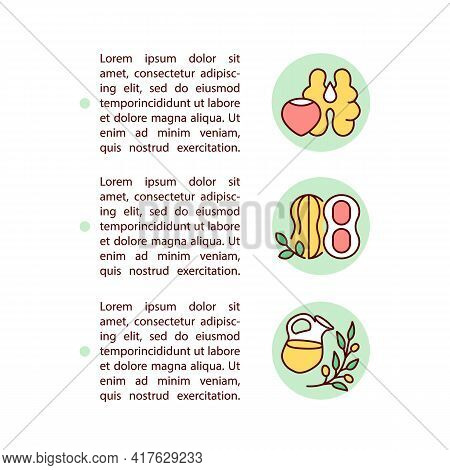 Nuts And Olive Oils Concept Line Icons With Text. Ppt Page Vector Template With Copy Space. Brochure