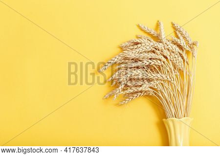 Sheaf Ripe Golden Wheat Ears Close Up. Background Of Ripening Ears In Yellow Ceramic Vase. Concept O