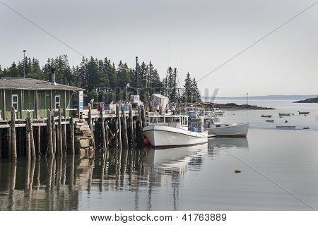 Dockin' in Downeast Maine