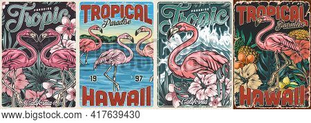 Tropical Vintage Colorful Posters Set With Inscriptions Beautiful Pink Flamingos Pineapples Exotic F