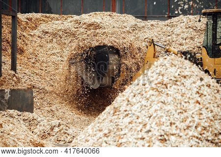 The Excavator Loads Wood Chips. The Large Bucket Of The Conveyor Loads Biofuels And Wood Mulch. Indu