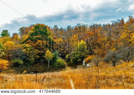 Cave Surrounded By Trees On An Autumn Day