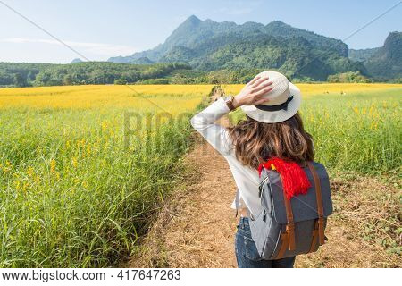 Backview Of Young Asian Tourist Woman Visiting Sunhemp Field (crotalaria Juncea) At The Foothills Of
