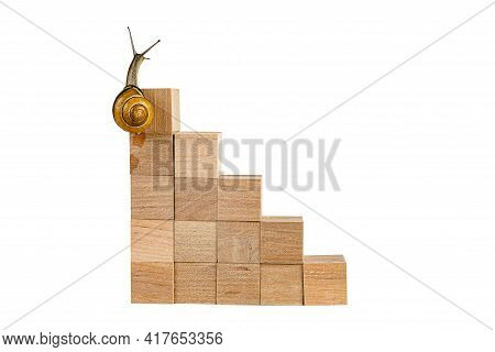 Snail Walk Up The Career Stairs. Concept Of Personal Development, Career , Changes, Success. Isolate