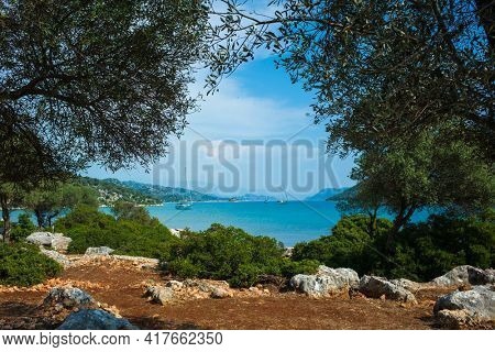 Picturesque scenery of Mediterranean sea with yachts on calm blue water in frame of olive trees and soil of Turkish coast, View from Lycian way hiking trail near Ucagiz harbour, Turkey