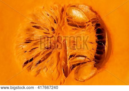 Macro Of Butternut Squash With Seeds. Raw Product. Vegeterian And Vegan Concept.